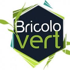 bricolovert-logo.jpg